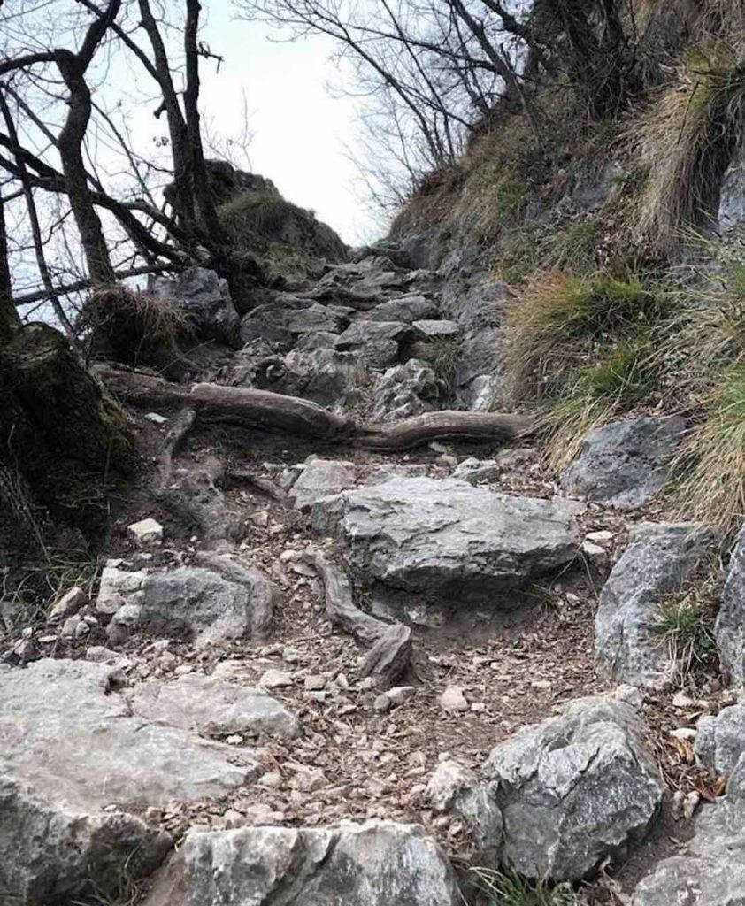 Sentiero Monte Mezzocorona